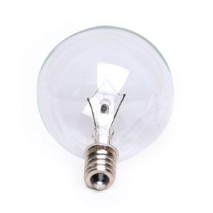 25 Watt Bulb